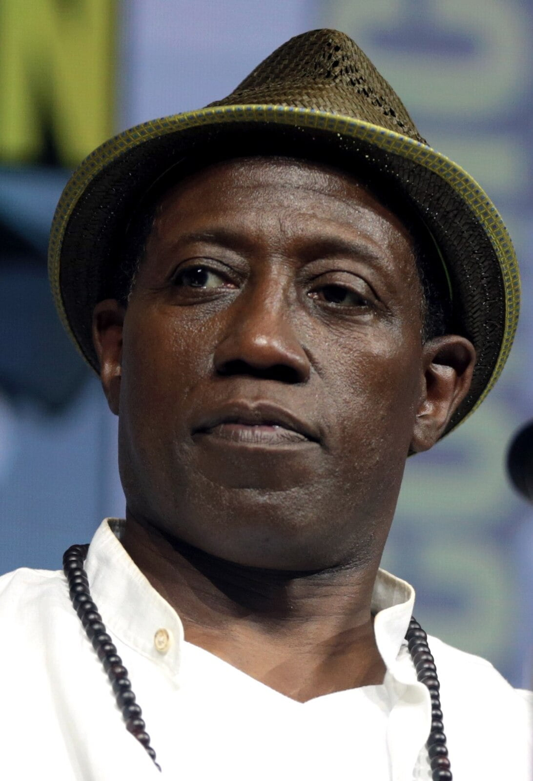 Wesley Snipes' Lowball Offer in Compromise Rejected in Tax Court